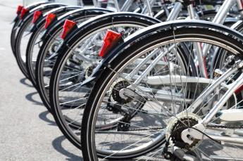 Zakopane Atrakcja Wypożyczalnia rowerów U Holka