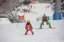 Zakopane Atrakcja Szkoła narciarska Ptak-Team