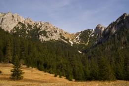 Zakopane Atrakcja Dolina Dolina Kościeliska