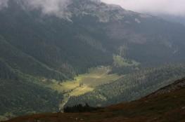 Zakopane Atrakcja Dolina Dolina Kondratowa